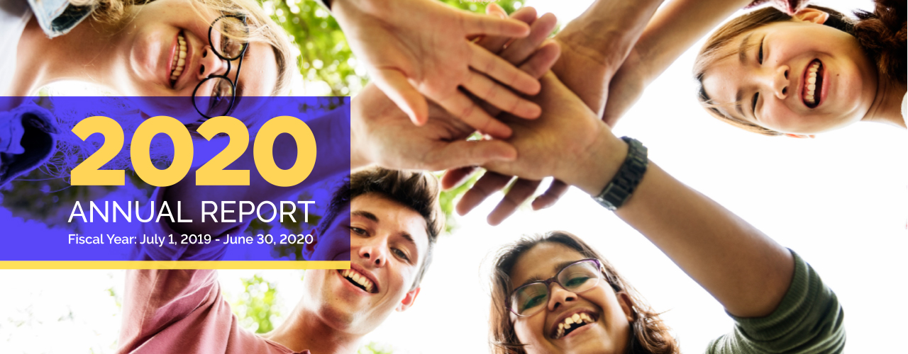 2020 Annual Report Header