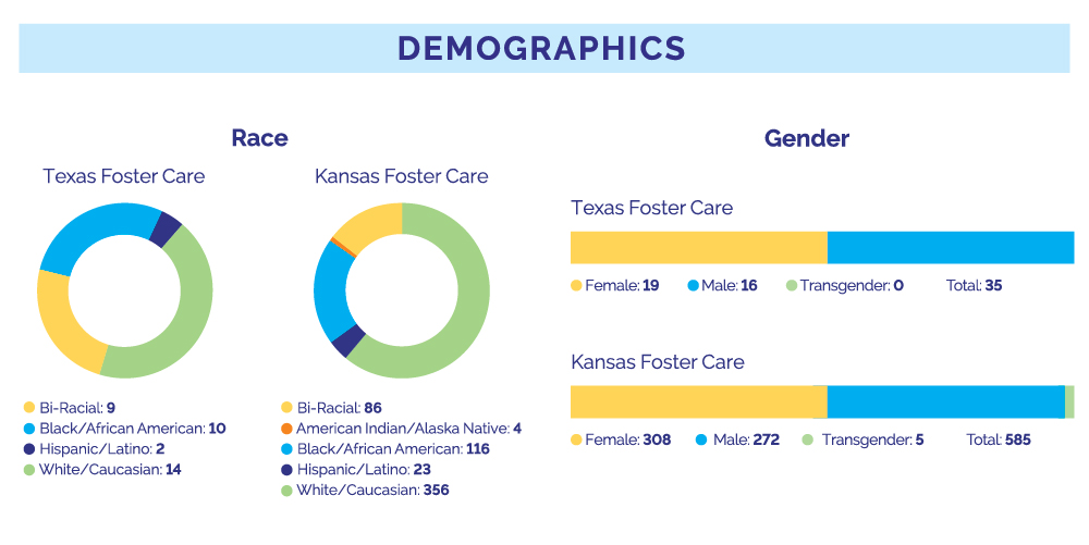 2020 Demographics