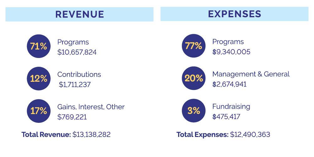 2020 Revenue and Expenses
